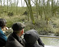 Bevers speuren in de Biesbosch