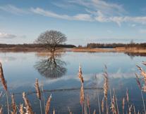 Natuurtocht Lauwersmeer met gids